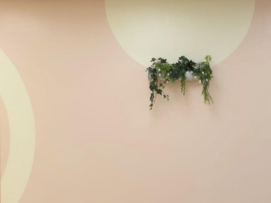 תקריב של הצמחיה על גבי הקיר
