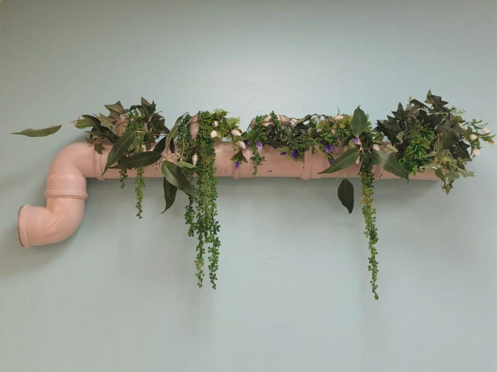תקריב נוסף של הצמחיה בצידו השני של הקיר